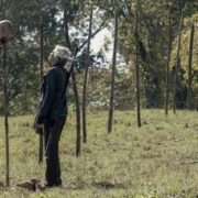 The Walking Dead 10x14: mira las flores